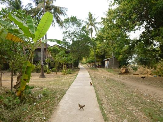 Un villaggio sull'isola nel Mekong
